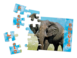 Magnet puzzle individuell
